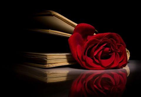 Rose_in_a_book.jpg-3747